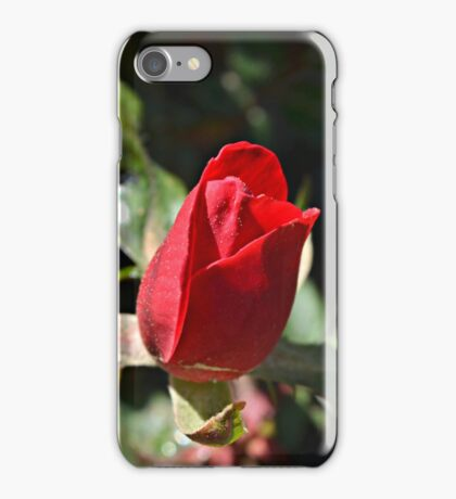 A Single Beauty Dressed in Red iPhone Case/Skin