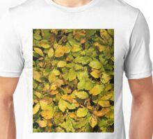 Beech Leaf texture Unisex T-Shirt