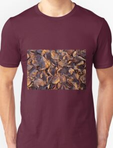 Beech Leaves and Frost Unisex T-Shirt