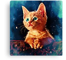 A Kitten's World Canvas Print