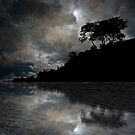 4156 by peter holme III