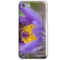 Busy Busy Bee on Pasqueflower  iPhone Case/Skin