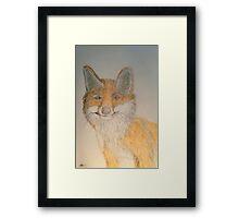 Nora's fox Framed Print