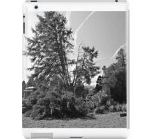 Cemetery Cross iPad Case/Skin