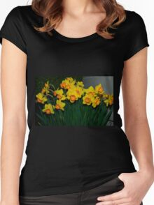 Mary Bohannon Daffodils Women's Fitted Scoop T-Shirt