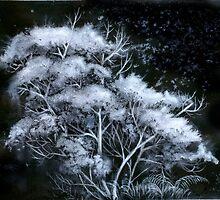 Frostnatt  by Bjorn Eek