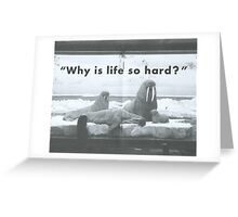 WHY Greeting Card