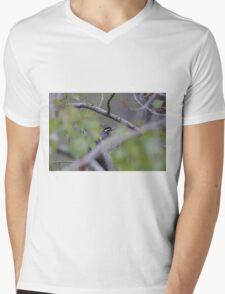 Woodpecker Mens V-Neck T-Shirt