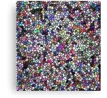 stain glass/jpcool79 Canvas Print