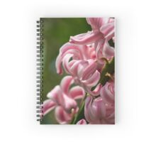 Pink and White Hyacinth Macro Spiral Notebook