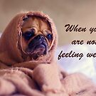 Pug Dog Sympathy, Wrapped in sack, Humor by Mary Taylor