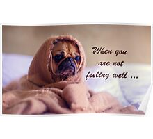 Pug Dog Sympathy, Wrapped in sack, Humor Poster