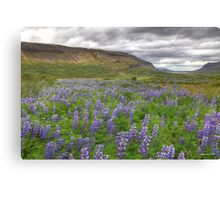 Young Landscapes - Limited Edition Print 1/10 Canvas Print