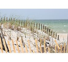 Ocean beach, sand dune, and protective fence Photographic Print