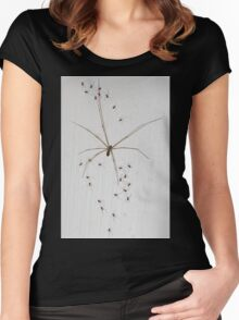 Daddy-Long-Legs Spider & Babies Women's Fitted Scoop T-Shirt