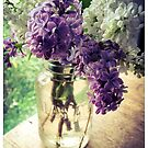 Lilac in Mason Jar by Barbara Wyeth