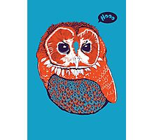 Hoo Photographic Print