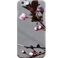 March Bloom iPhone Case/Skin
