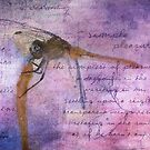 Simple Pleasures IV ~ The Dragonfly by Rhonda Strickland