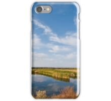 Tule Lake Marshland iPhone Case/Skin