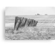 Prairiehenge - BW Canvas Print