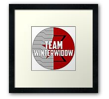 Team WinterWidow Framed Print