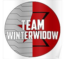 Team WinterWidow Poster