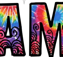 CAMP rainbow tiedye Sticker