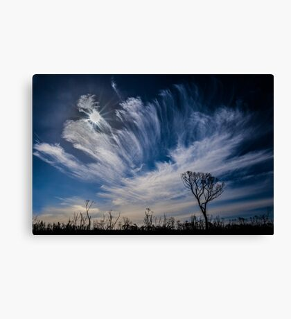 Dancing Clouds... Canvas Print