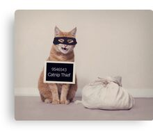 The Catnip Thief Canvas Print