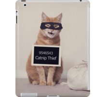 The Catnip Thief iPad Case/Skin
