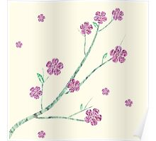 Spring cherry flowers Poster