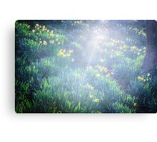 Springtime in Wales Canvas Print