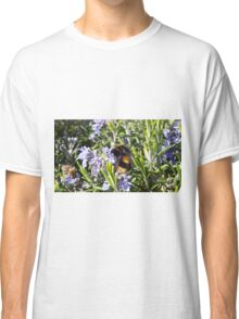 Busy Bees on Rosemary Flowers Classic T-Shirt