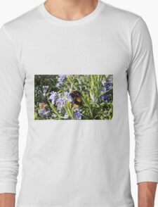 Busy Bees on Rosemary Flowers Long Sleeve T-Shirt