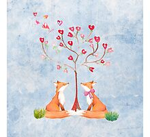 Foxes under a love tree Photographic Print