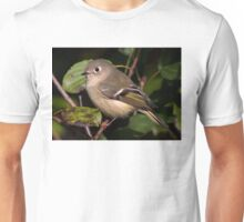Ruby-crowned Kinglet Unisex T-Shirt