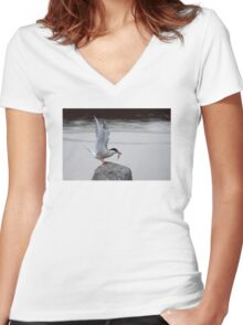 Common Tern Women's Fitted V-Neck T-Shirt