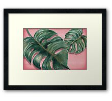 monstera leaf  Framed Print