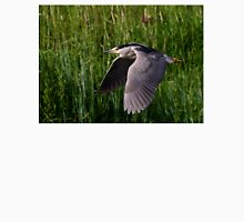 Black-crowned Night heron T-Shirt