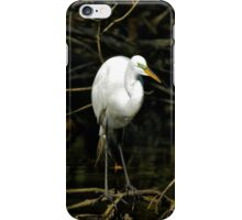 Great White Egret with Breeding Colors and Plumage. iPhone Case/Skin
