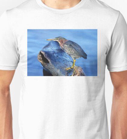 Green Heron T-Shirt