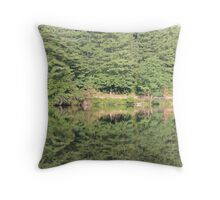trees reflected in lake Throw Pillow