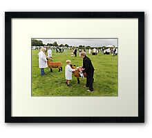 Agricultural Show sheep competition Framed Print