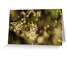 Floral 11 Greeting Card