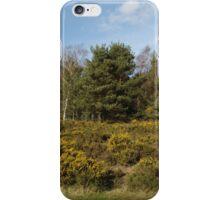Broom Bushes On Hillside iPhone Case/Skin