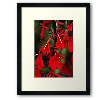 Vision In Red Framed Print