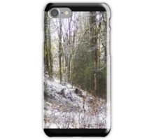 Snowy Sunlit Forest Glade iPhone Case/Skin