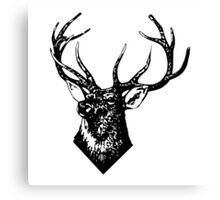 STAG, Stag Head, The Stag, Deer, Antlers Canvas Print