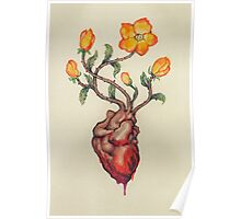 This Blossoming Bleeding Heart Poster